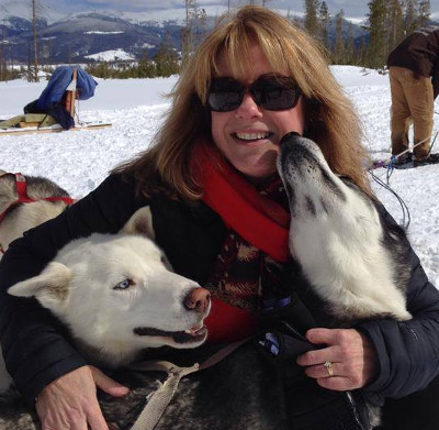 Harpo and Minnie the huskies loving a dog sled guest.